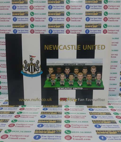 Box Newcastle United 2003-2004 home Fan Favorite limited figures